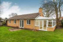 Detached Bungalow in Three Elms Road, Hereford