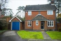 Burrell Green Detached house for sale
