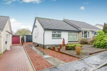 2 bed Semi-Detached Bungalow for sale in Roseburn Drive, Cumnock...