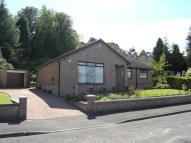 3 bed Detached Bungalow in Bogiewood Road...