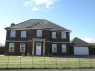 4 bed Detached house in Foresters Close, Wynyard...