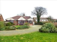 3 bed Detached Bungalow in Hillcrest Grove...