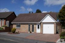 2 bedroom Detached Bungalow in Hensley Court, Norton...
