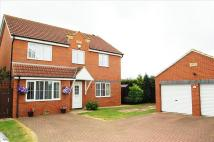 4 bed Detached home in Whinflower Drive, Norton...