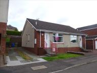 1 bed Semi-Detached Bungalow in Maple Avenue, Dumbarton