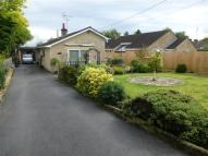 Detached Bungalow for sale in Bells Lane, Zeals...