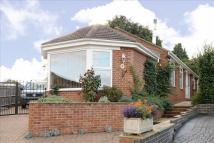 Acremead Road Detached Bungalow for sale