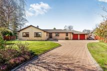 Deanston Gardens Detached Bungalow for sale