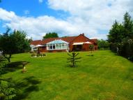 4 bedroom Detached Bungalow for sale in Wilton Close, Street