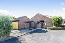 2 bed Detached Bungalow for sale in Ingram Place, Westbury