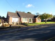 4 bed Detached Bungalow in Orchard Road, Westbury
