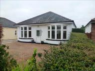 Detached Bungalow in Heol Carne, Cardiff