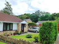 2 bed Semi-Detached Bungalow for sale in Silver Birch Close...