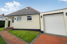 3 bed Detached Bungalow in Greenfield Road, CARDIFF