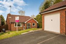 Detached Bungalow for sale in Birchwood View, Ashbourne