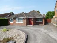Detached Bungalow for sale in Chestnut Avenue...