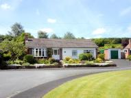 Detached Bungalow for sale in Frith Avenue, Delamere...