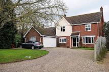 Detached house for sale in Hall Lane, Hingham...
