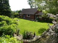 Detached Bungalow for sale in Coltishall Road, Buxton...