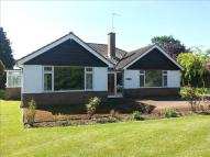 3 bed Detached Bungalow in Steyning Lane...