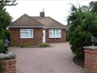 Detached Bungalow in Kingsway, Boston