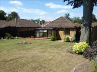 Detached Bungalow for sale in Meadow Drive, Lakenheath...