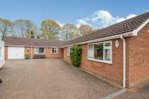 Detached Bungalow for sale in Rattlers Road, Brandon