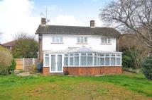 Campden Road Detached house for sale