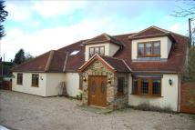 6 bed Bungalow for sale in Chelmsford Road...