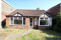 2 bed Detached Bungalow in Harwich Road, Colchester