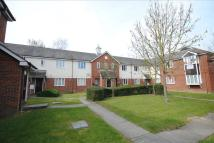 1 bed Flat in Chinook, Highwoods...