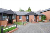 Terraced Bungalow for sale in Ipswich Road, Colchester