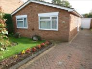 Detached Bungalow for sale in Portfields Road...