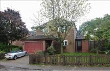 4 bed Detached house in Court Road, Cranfield...