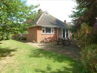 2 bed Detached Bungalow in St Ethelwolds Close, Ely