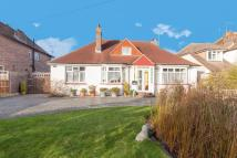 Detached Bungalow in Cooden Drive...