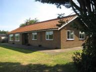 3 bed Detached Bungalow for sale in Linstead Road...