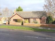 Detached Bungalow for sale in Roman Way, Halesworth
