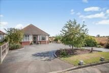 3 bedroom Detached Bungalow for sale in Petersfield Lane...