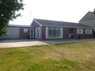 Detached Bungalow in Main Road, Dovercourt...