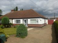 3 bed Semi-Detached Bungalow in Cemetery Road, Hatfield...
