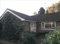 2 bed Detached Bungalow for sale in Pineheath Road...