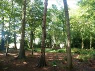 Land in Old Cromer Road for sale