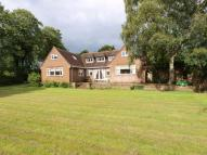 5 bed Detached house in 9 Pine Walks, Prenton...