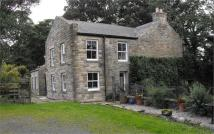 Farm House in Prospect Hill, Allendale,