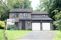4 bedroom Detached home in Loughbrow Park, Hexham,