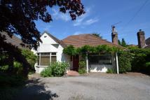 2 bed Bungalow in Ty Wern Road, Cardiff