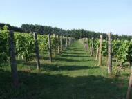 Meopham Farm Land for sale