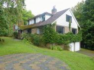 6 bedroom Detached home for sale in Sheepstreet Lane...