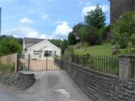 Detached Bungalow in Bedwellty Road...